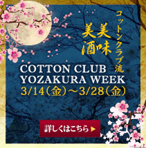 YOZAKURA WEEk (2014.3/14-3/28)